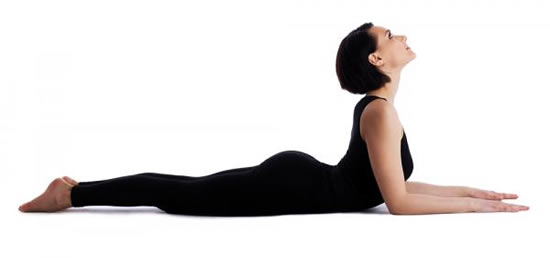 Sphinx yoga posture