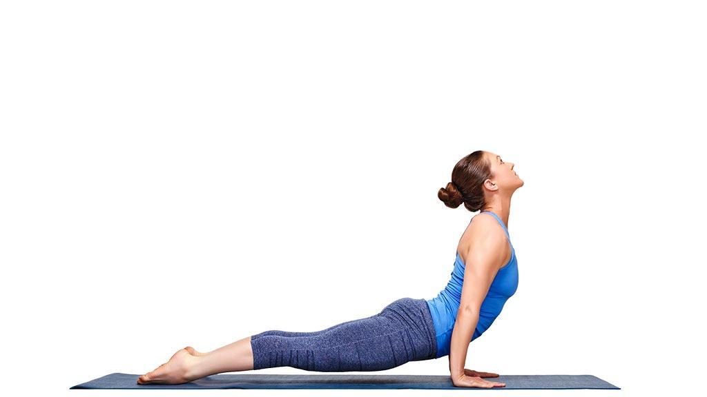 Upward facing dog yoga posture